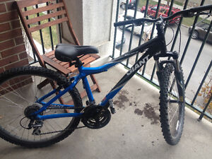 Almost Brand new Giant Bicycle small size