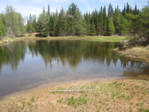 Great lot with beautiful pond, clearing and small storage bldg!