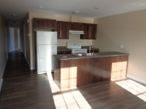 Brand New 2 bedroom Duplex, All One Level Home