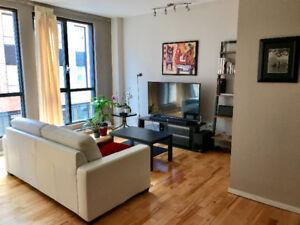 Magnifique appartement au coeur du Vieux-Montréal