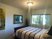 High-end B&B one bedroom suite rented in winter, fully furnished