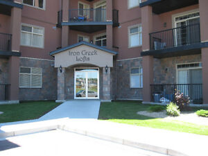HURRY ACT NOW!! High end 2 bed 2 bath Condo at Iron Creek! $1375