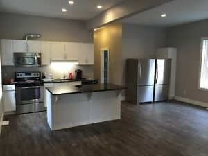 MODERN DOWNTOWN STUDENT HOUSING - 4, 5 AND 6 BR - $495 per BR