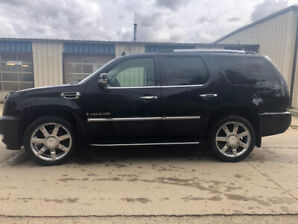 2009 Cadillac Escalade for sale! **Price Reduced**