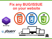 I will Resolve Wordpress, Jquery, CSS And HTML issues.