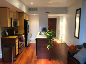 BEAUTIFUL FULLY FURNISHED ALL INCL. TWO BEDROOM CONDO DOWNTOWN