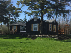 Beautifully renovated modern-rustic bungalow in Quinte West!
