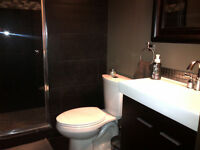 Residential/Commercial Service Plumbing