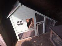 Pale green chicken house coop run