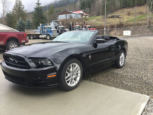 2014 Ford Mustang V6 Premium Coupe (2 door)