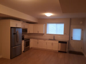 Brand new suite available for rent