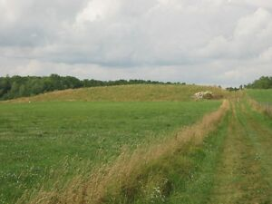 Farm/Commercial Property Kitchener / Waterloo Kitchener Area image 8