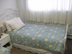 Super Single wrought iron bed with box spring and mattress