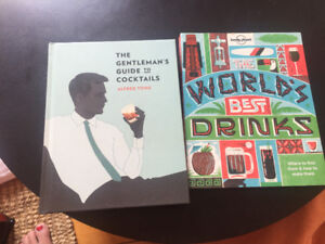Lot de livres: cocktails, romans...