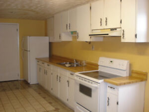LARGE 1 BEDROOM BASEMENT WITH SEPARATE ENTRANCE AVAILABLE