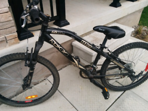 Reebok mountain bike (youth bike)