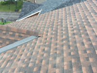 20/20 Roofing & Renos
