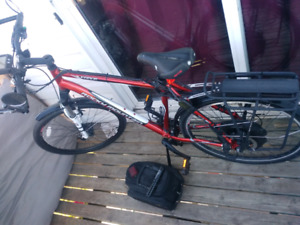 Electric mountain bike for sale