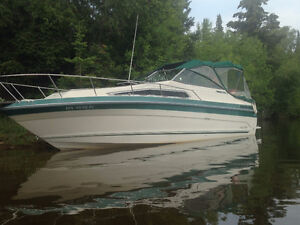 Cruiser in great condition