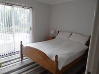 Beautiful Double Room Available right now! Cheap!