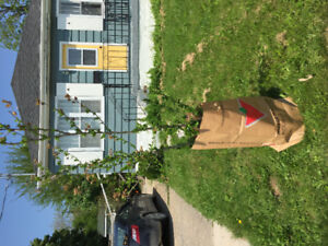 FREE!! 2 Hop Trees sitting out front