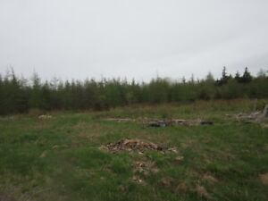 30 acres with 635' road frontage