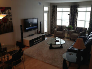 Fully Furnished Executive Condo for Rent