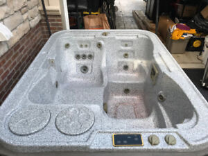 Hydropool Self-Cleaning H300