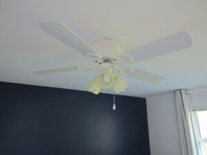 Ceiling Fan 42 inch with 3 lights