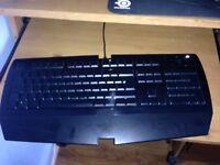 Razer Arctosa Gaming keyboard