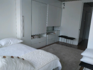 Fully furnished, 21/2, Griffintown
