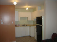 May 1: Sunny 4/2 in St. Henri, 2 closed bedrooms, RENOVATED
