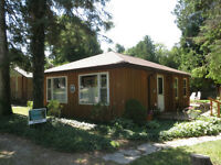 Cute Cabin and Bunkie in Southampton