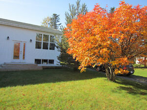 House for Sale in Sandy Cove on the Eastport Peninsula St. John's Newfoundland image 1