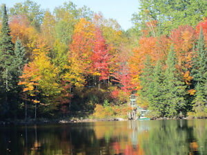 Log cottage/home on beautiful lake 30 minutes to Mont Tremblant West Island Greater Montréal image 3