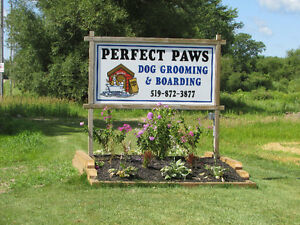 DOG BOARDING & GROOMING--STRATHROY AREA