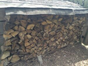 Campfire wood.