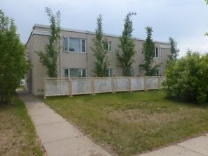 Temporary fence / fencing/ privacy screen Strathcona County Edmonton Area image 1