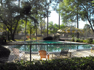 Florida Condo With access to Pool  - 20 Mins from Universal