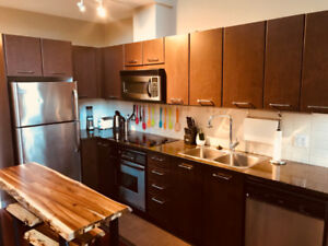Luxury Furnished Townhouse in heart of Downtown