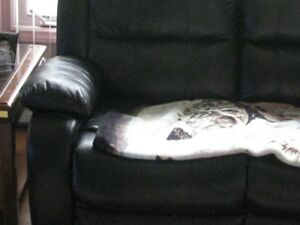 reclining sofa and chair for sale(leather)