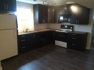 2 bedroom basement suite in south central Edmonton