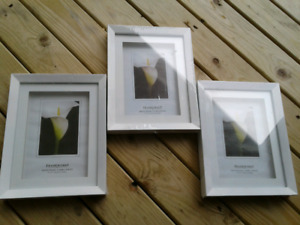 Brand new white 5x7 picture frames