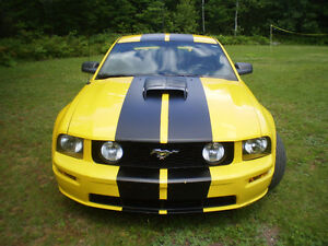 2006 Ford Mustang gt beaux look