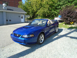 2004 Ford Mustang GT V8 4.6L 40iem anniversaire