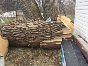 Morceaux d'arbre, morceaux bois
