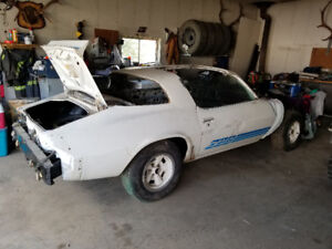1981 Z28 T roof with rebuilt 350 in it 400 turbo tranny in it to