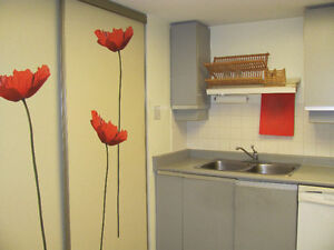 One room available in a condo - next to Humber college North