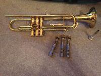 Trumpet King 601