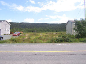 Fully Serviced Oversized Building Lot in Holyrood! St. John's Newfoundland image 3